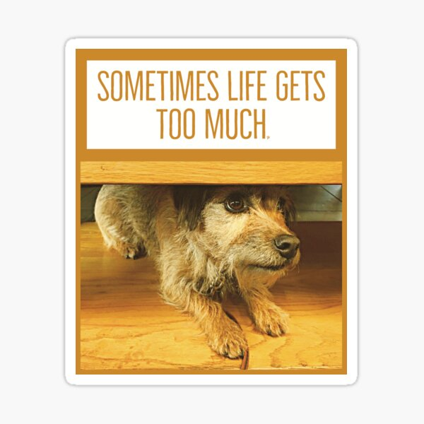 Cute dog and life too much slogan design Sticker