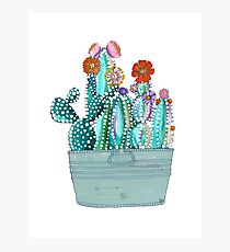 Colored Callous Cacti Photographic Print