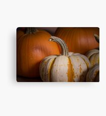 Pumpkins 2 Canvas Print