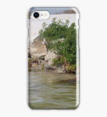 Wild ducks 2 iPhone Case/Skin