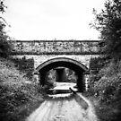 HiM58 Rail Bridge Kings Clipstone by humblebeeabroad
