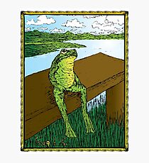 Frog Life Photographic Print