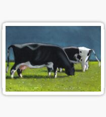 Holstein Dairy Cows Grazing, Oil Pastel Painting, Farm Sticker