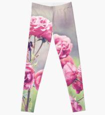 Plant Me Pink Roses Leggings