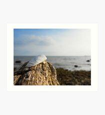 Ein tag am Meer Art Print