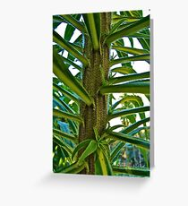 Close Plant Greeting Card
