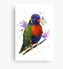 Watercolor Lorikeet at the Pet Store Canvas Print