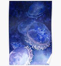 Watercolor Moon Jellyfish at the Seattle Aquarium Poster