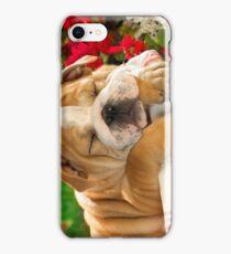 Sleeping Cutie iPhone Case/Skin