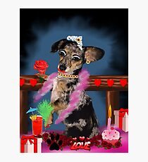 The Floozie Puppy Photographic Print