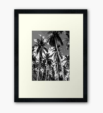 Palm Trees in Mono Framed Print