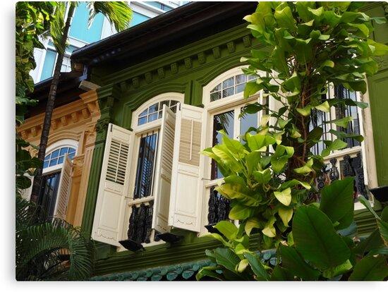 Singapore Shophouses by sailgirl