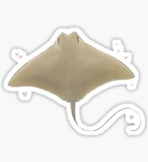 The Beautiful Cownose Ray Sticker