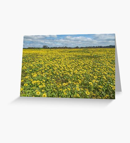 Spring in Yan Yean Country Victoria Greeting Card