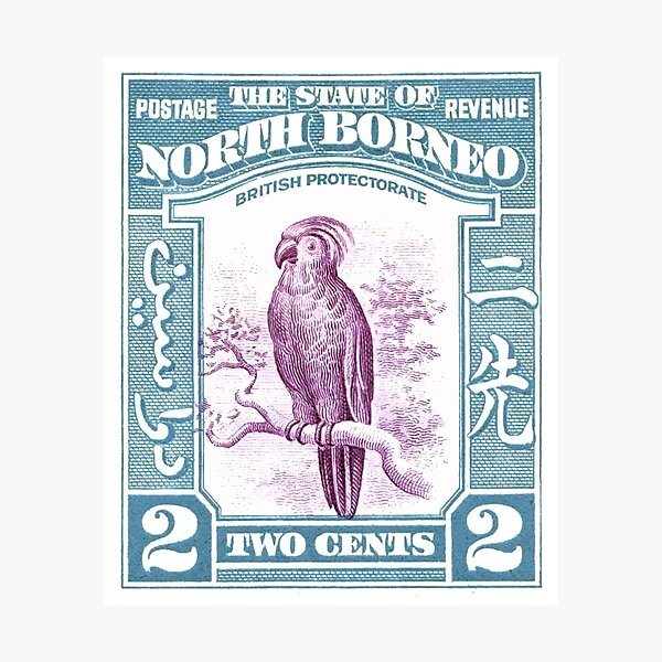 1939 North Borneo Palm Cockatoo Postage Stamp Photographic Print