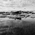 Jökulsárlón Contrasts by kernuak