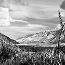 Tasman Valley by Robert Dettman