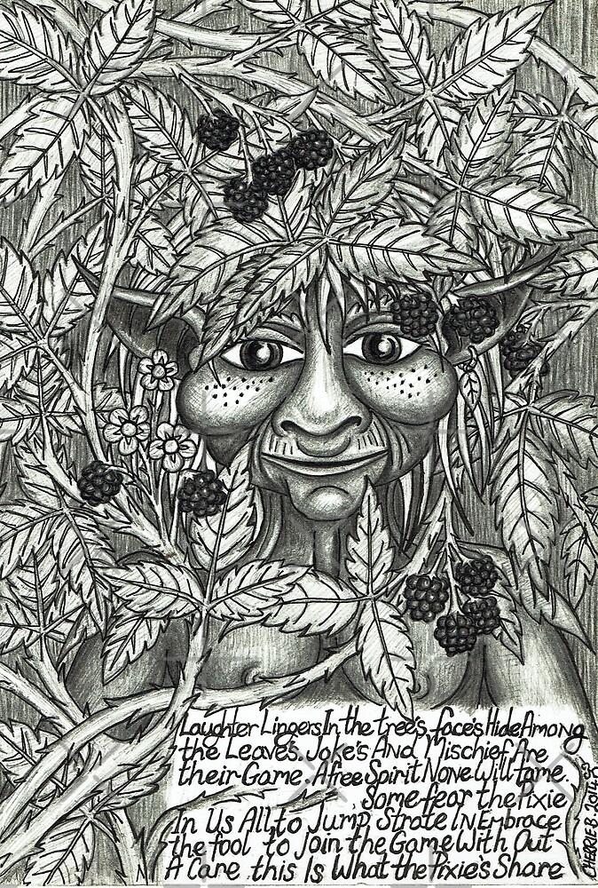 A Pixie Poam by CherrieB