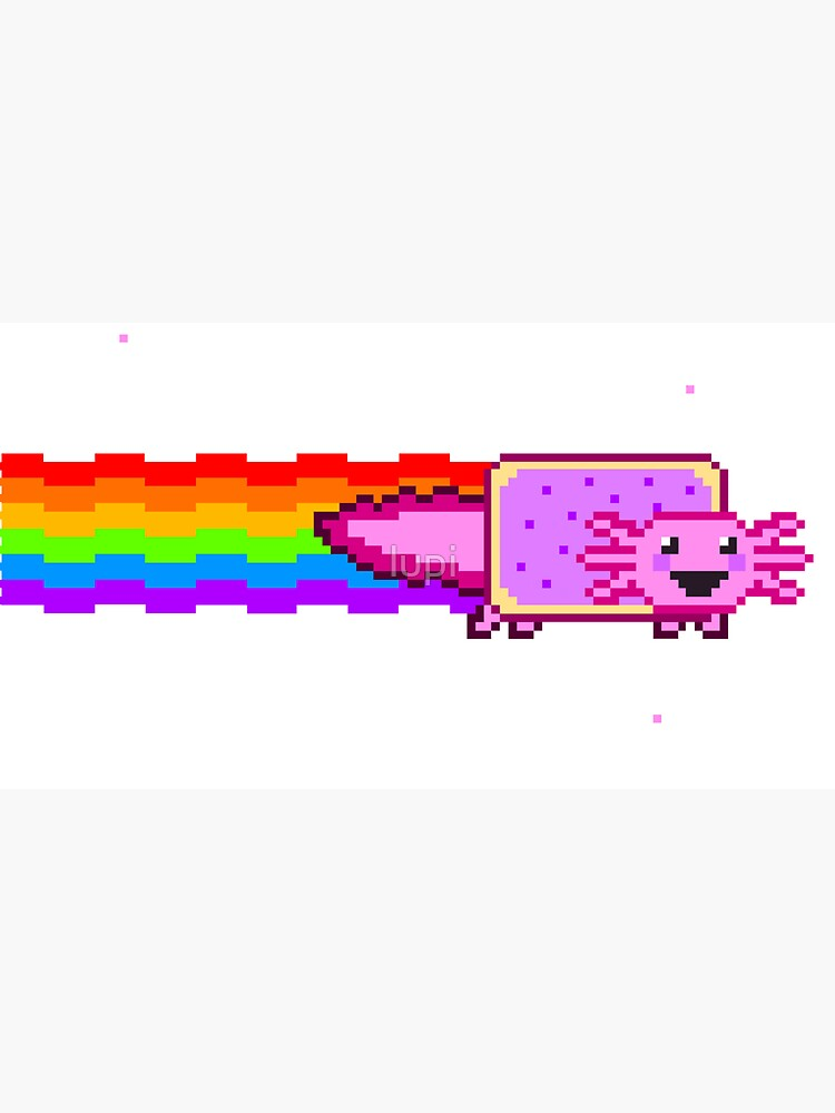 Nyan Axolotl by lupi