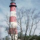 Assateague Island Lighthouse by nealbarnett