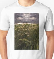 Prairie Grasses Northeastern Colorado T-Shirt