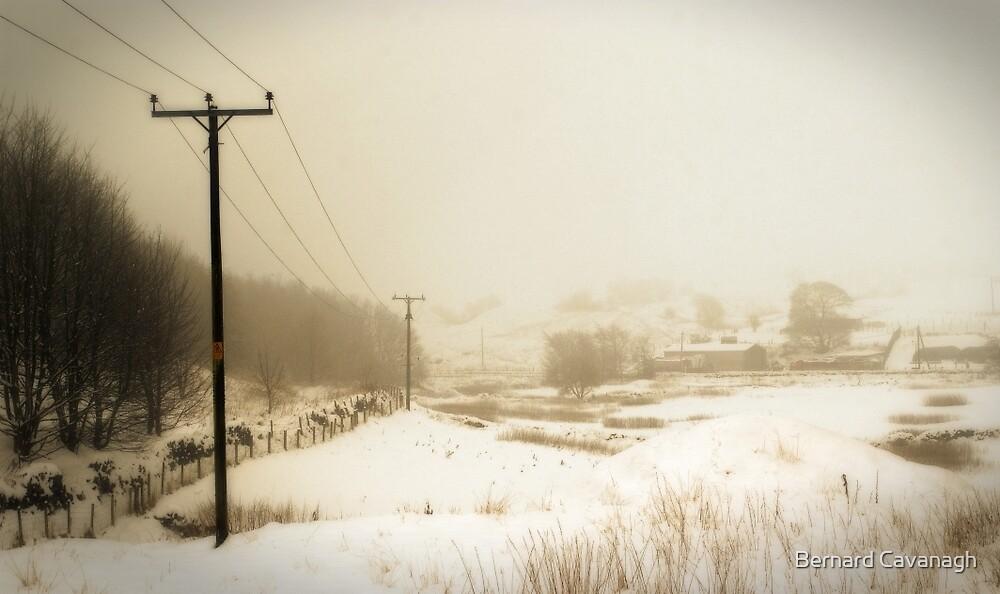Winter 08 by Bernard Cavanagh