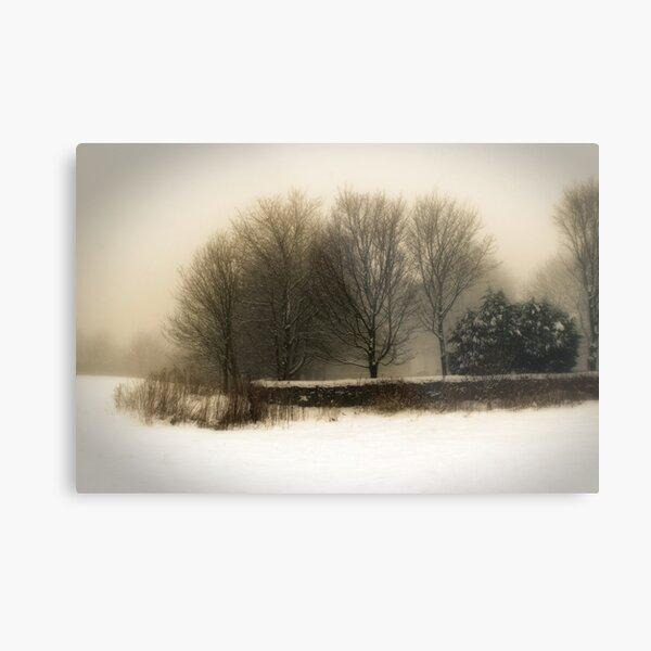 Winter 01 Metal Print