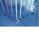 Red Arrows by Samantha Norbury