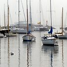 Foggy Day Harbor by phil decocco