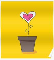 Flower of love. Beautiful love flower : romantic symbol Poster