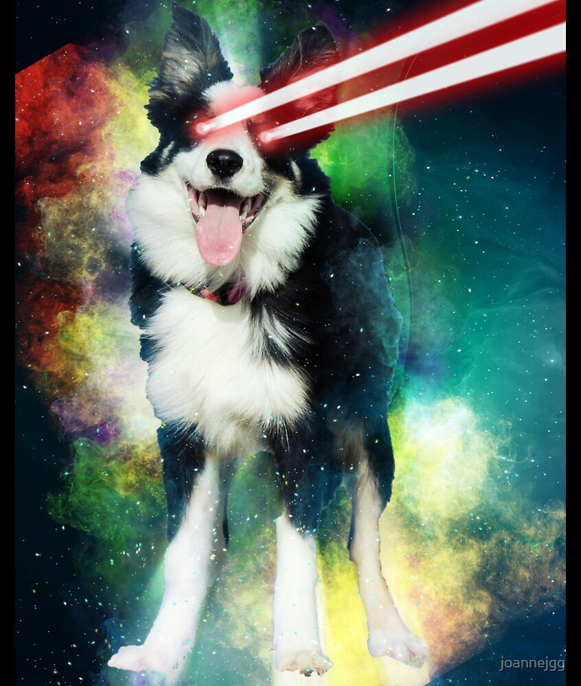Border Collie Dog in Space Galaxy Art Design by joannejgg