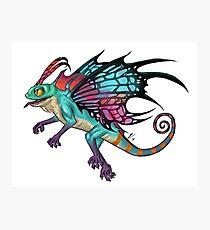 Faerie Dragon Photographic Print