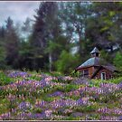 Cabin in the Lupine - Large Format Edition by Wayne King