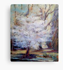 FUMC Cherry Trees, oil on canvas Metal Print
