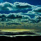 A Cadillac Sunset by Shari Galiardi