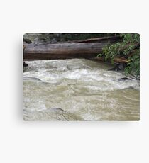 After effects of storm Canvas Print
