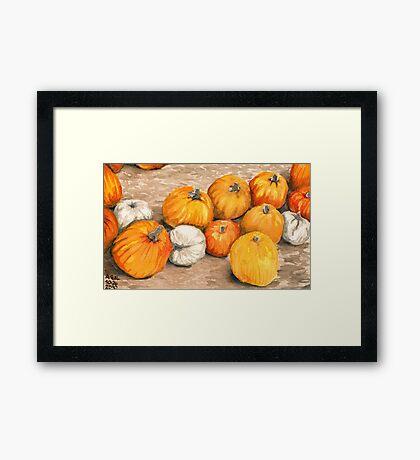 Pumpkins III Framed Print