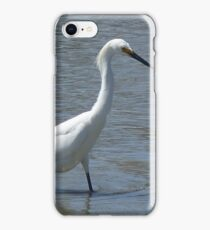 Snowy Egret, San Francisco Bay iPhone Case/Skin