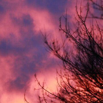Cotton candy sky by tqosaw