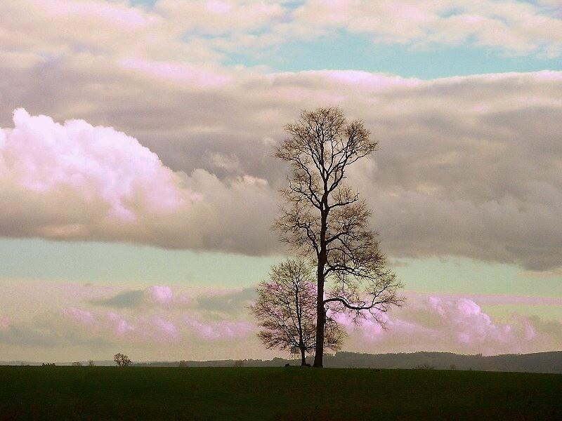 Cielo color rosa... by cieloverde