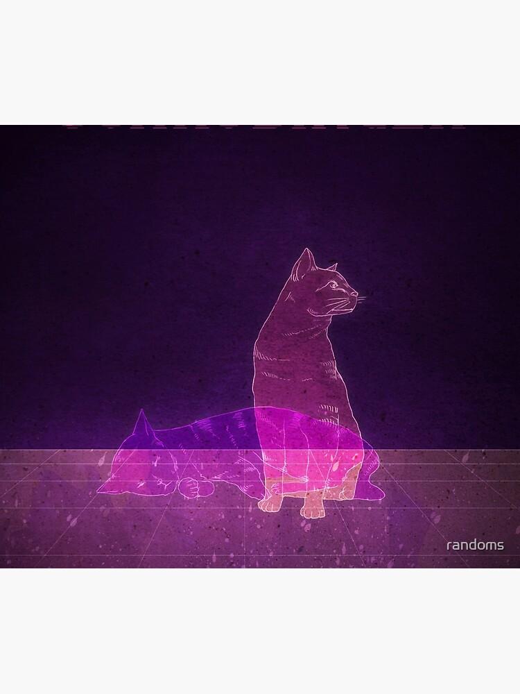Schrodinger's Cat by randoms