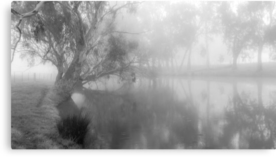 The Misty Morning by sjphotocomau