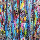 The Old Doors by Jacqueline Eden