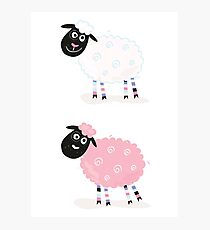 Cartoon sheep. Vector Illustration of funny sheep Photographic Print