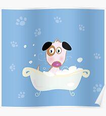 Cute dog bath. Bathing cute small doggie Poster