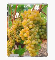 Vineyard Grapes  iPad Case/Skin