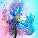 Poppy Art by Svetlana Sewell