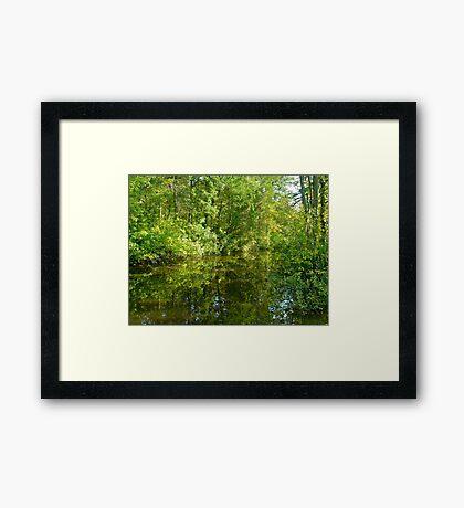 Creek At Whitesbog - Browns Mills - New Jersey - USA Framed Print