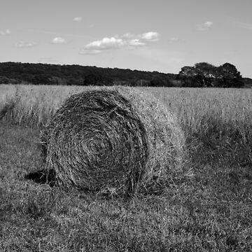 Hay Bale I BW by davegordon