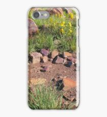 Davis Mountains  iPhone Case/Skin